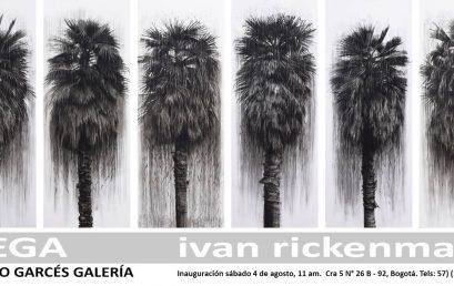 Exposición: Siega de Ivan Rickenmann en Alonso Garcés Galería