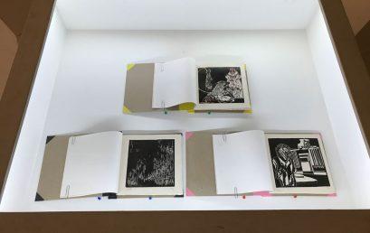La madriguera – Colectivo la oficina