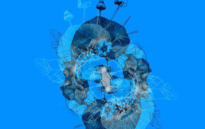 Simbionte | circuito interuniversitario de proyectos de grado en arte 2019 – 2