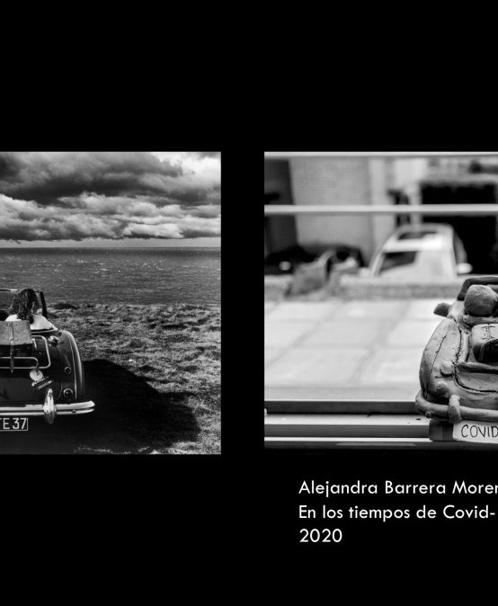 En los tiempo de Covid-19 – Alejandra Barrera Moreno