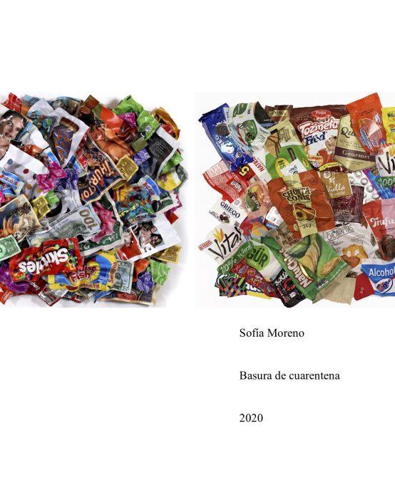 Basura de cuarentena – Sofia Moreno