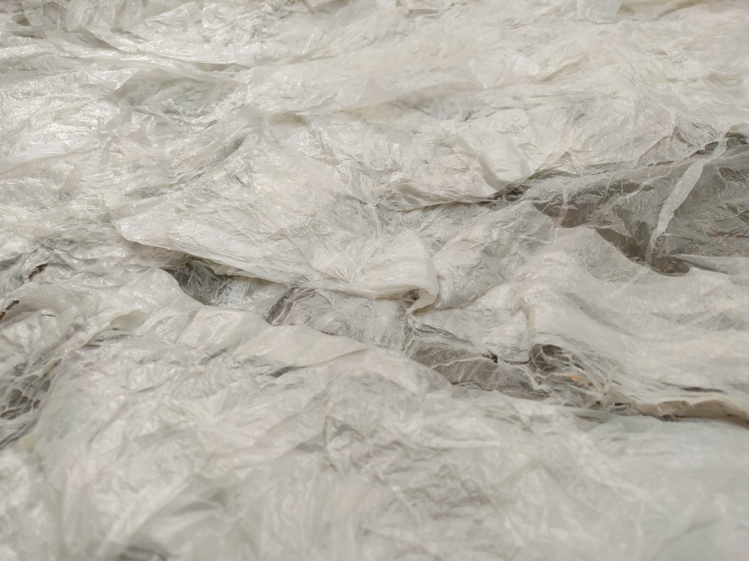 Resto plástico disfuncional – Kamila Lenes