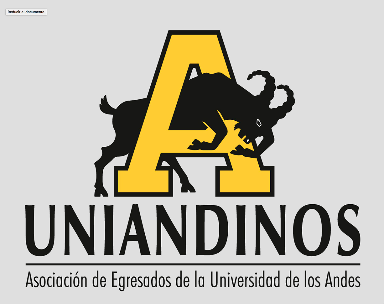Profesional Senior Arte y Cultura   Uniandinos