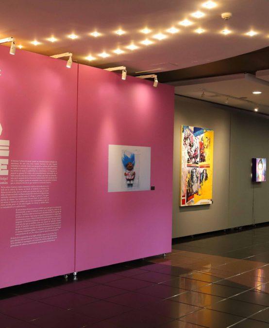 Egresados: Excessive Knowledge una exposición de Juan Camilo Guzmán